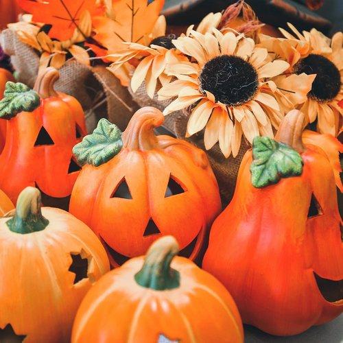 Jeste li fan jesenskih dekoracija u domu? 🍁🍂🙃 . . #supernovahrvatska #shopping #autumn #decoration #home #family #kik